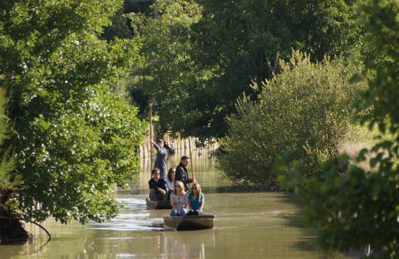 Barque sur les marais au Perrier