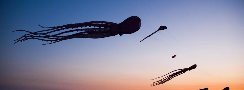 Cerfs-volants au Festival A Tout Vent