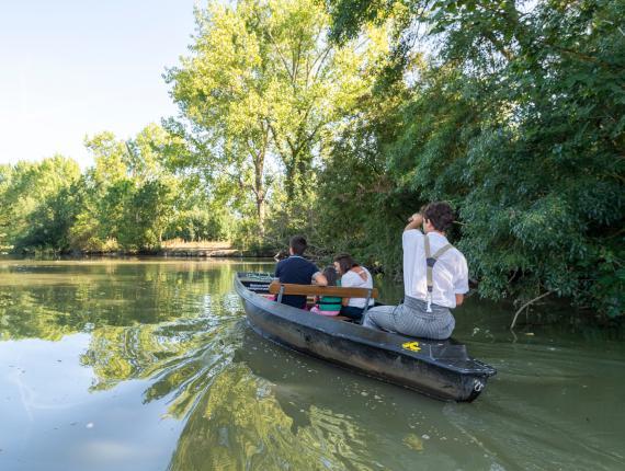 Balade en barque marais poitevin Maillezais