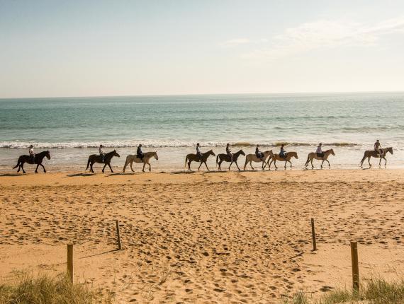 Ballade à cheval sur la plage de saint jean de monts