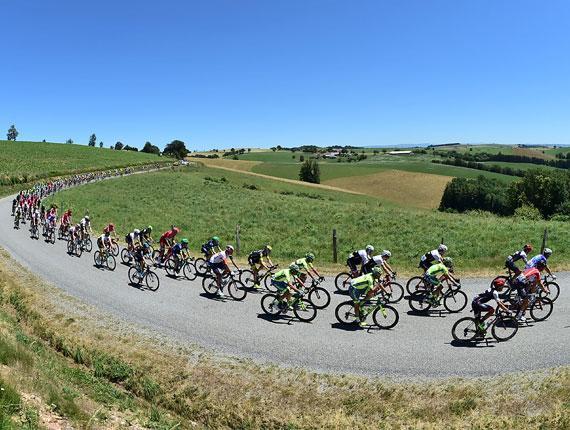 Peloton lors d'une étape du Tour de France