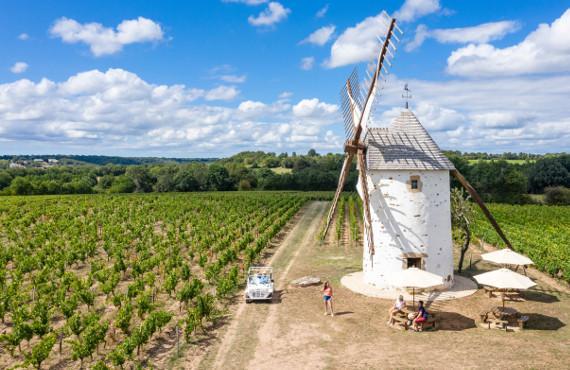 Les vignobles Mourat à Mareuil sur Lay