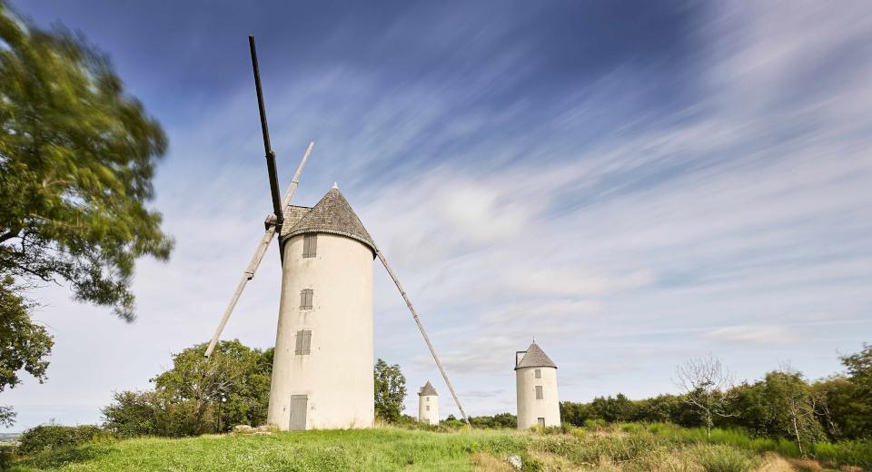 Moulins de Mouilleron en Pareds