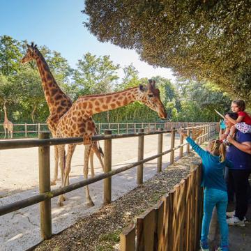 Zoo Les Sables