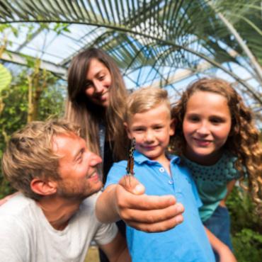 L'île aux Papillons en famille à l'Épine